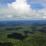 Înainte de sec.XVII, Amazonia era populată de societăţi complexe
