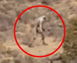 Un extraterestru straniu filmat în rezervaţia Navajo