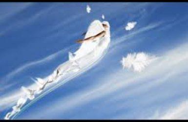 Îngeri filmaţi pretutindeni în lume