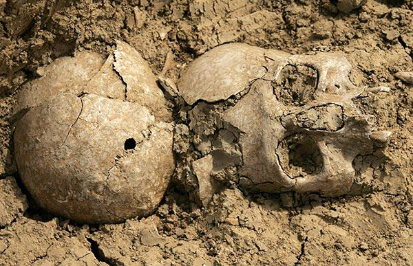 Un craniu de 40.000 de ani perforat de un glonte